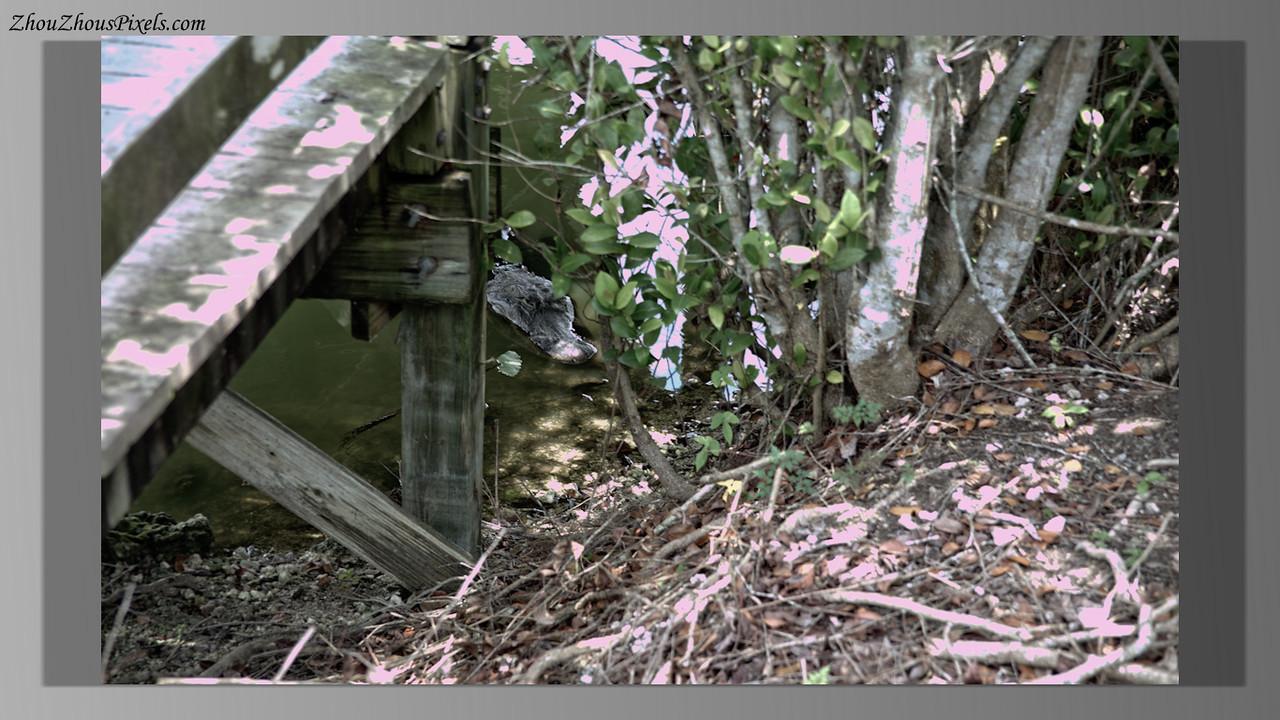 2015_04_20-25-4 Slideshow (Boat Trip)-390