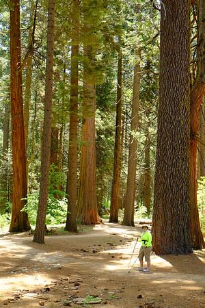 201506 Eastern Sierras