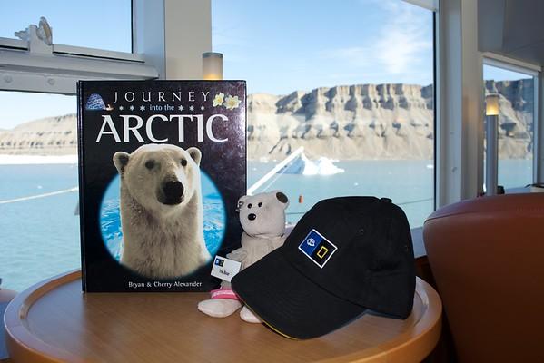 The Bear's Arctic Adventure