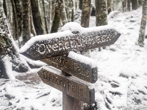 Snow covered sign at a sidetrip