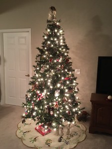 Mike and Diane Christmas Tree 2016