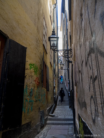 "Märten Trotzigs gränd - the width of its steps tapers down to 35"" making it the narrowest alley in Stockholm"