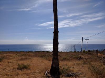S toward playa. Palm tree, landing obstruction