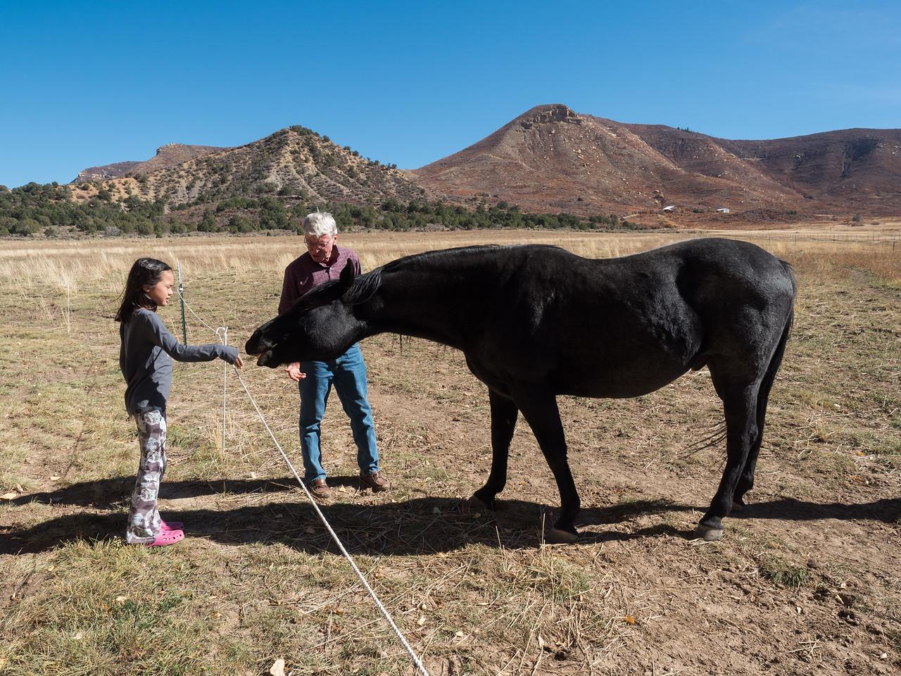 Lindsay feeding Samuel some hay.