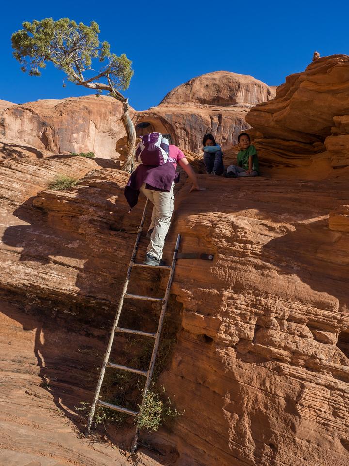 Climbing a small ladder along the Corona Arch Trail.