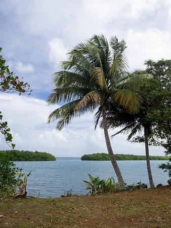 2016 - Guadeloupe