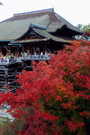 Day6 清水寺