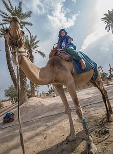 Maya on the Camel