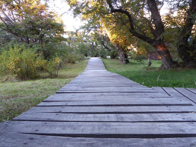 Walkway at EcoCamp