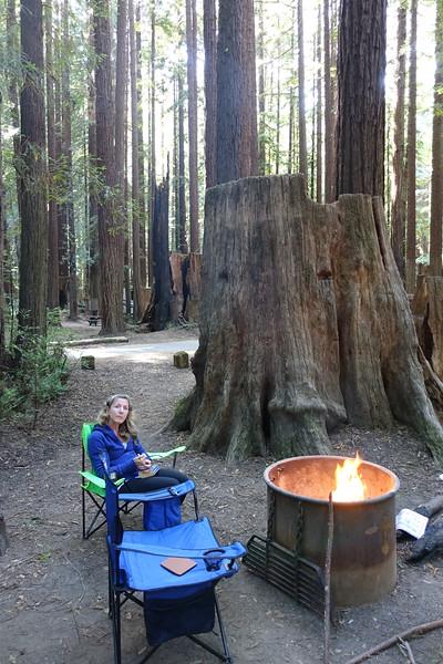 Humboldt Campsite