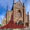 "St Magnus Cathedral in Kirkwall, Orkney was the first venue in Scotland to host ""Poppies: Weeping Window"". It was installed and displayed at St Magnus Cathedral from April 22 to June 12, 2016.  <br /> <br /> Orkney was the home of the Royal Navy's Grand Fleet, and on 31 May 2016 Orkney hosted the official commemoration for the Battle of Jutland, the largest and most decisive naval battle of the First World War which was fought at the cost of over 8,000 lives.<br /> <br /> This image was made by merging 5 separate exposures of this scene."