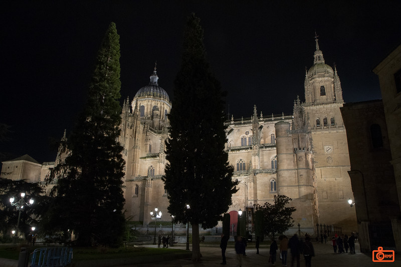 The New Cathedral of Salamanca.