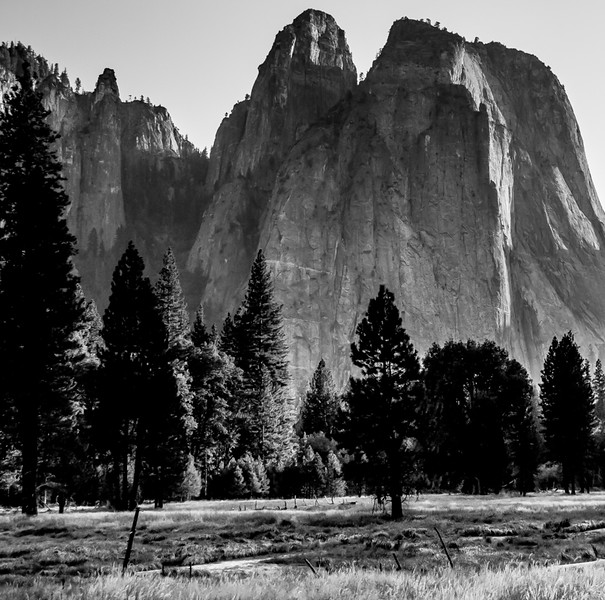 Cathedral Peak Over Yosemite Meadow (B&W)