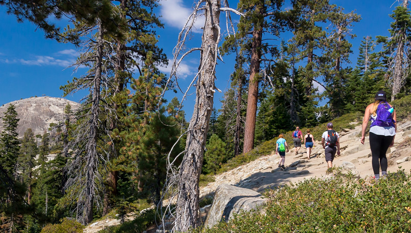 Trail to Sentinel Dome