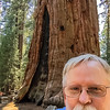 General Sherman Tree and Me!