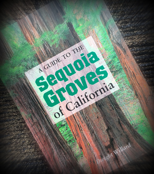 Sequoia Groves of California