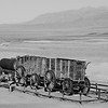 Death Valley - Borax 20 Mule Train Wagon
