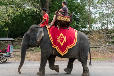 Some enter the Angkor Thom temple grounds via elephant.