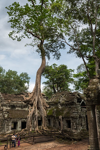 Ta Prohm - 11c Buddhist Angkor-area temple
