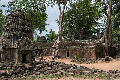 Spung trees at Ta Prohm - 11c Buddhist Angkor-area temple
