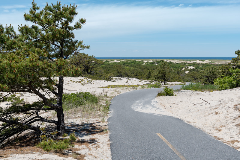 Province Lands bike path, Cape Cod.
