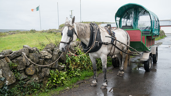 Alternative Transportation, Inis Mor, Aran Isles, Ireland
