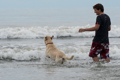 Scout and Andy swimming at Kiawah.