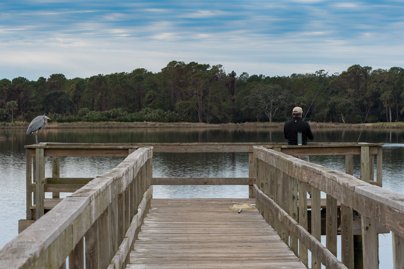 The two fishermen - bass pond, Kiawah Island.