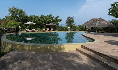 Pool at KIA Lodge, Tanzania.