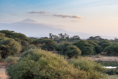 Mount Meru - Ndarkwai Ranch, Tanzania