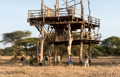 "The ""treehouse"" at Ndarkwai Ranch, Tanzania"