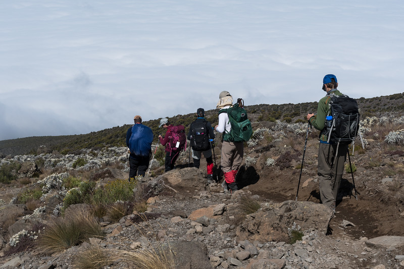 Descending from Barafu to Mweka, with Millenium Camp in view.