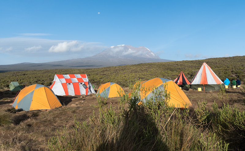 Our camp at Shira I has a grand view of Kibo.
