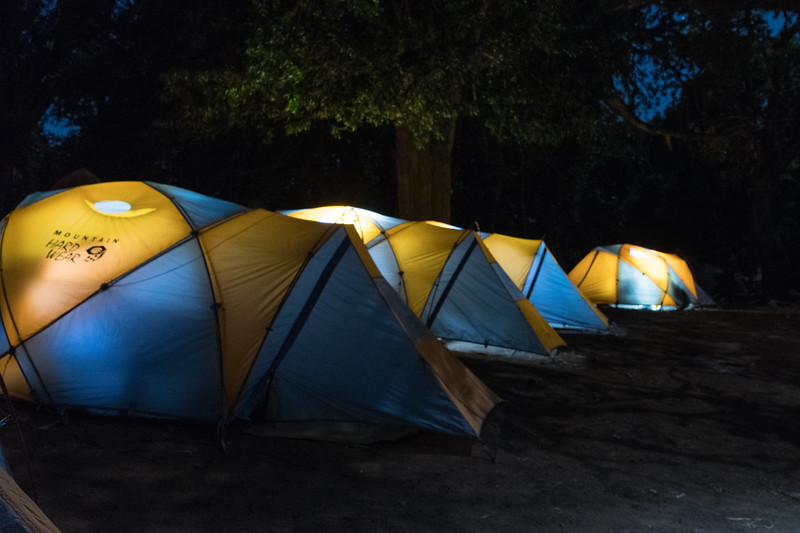Our cozy tents at Forest Camp.