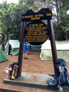 Forest camp - end of day 1.