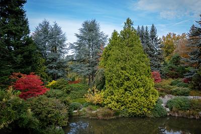 Kubota Garden October 2016
