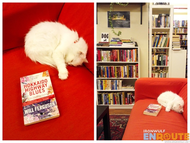 Frosty, the resident cat with the book I bought