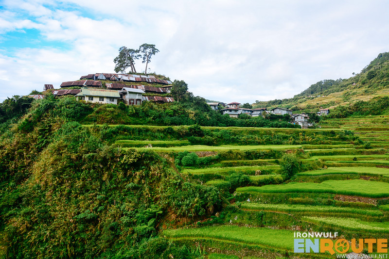 Fiew of Favaray from the rice terraces behind the village