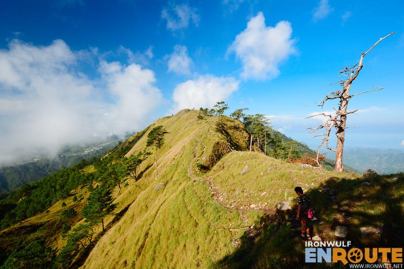 Trail to Gungal
