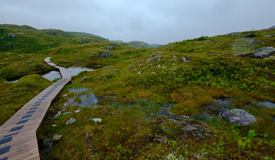 Typical rugged wet landscape of the southern granite coast of Newfoundland near Port-aux-Basques and Ile Aux Morts.