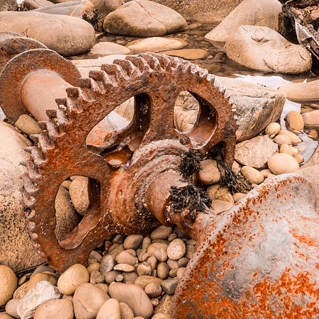 A large 1M diameter gear from the steam and sail powered SS Ethie. The bulky remains of the piston crank and boilers remain visible offshore, half submerged in deeper waters.
