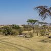 Kenya - Maasai Mara