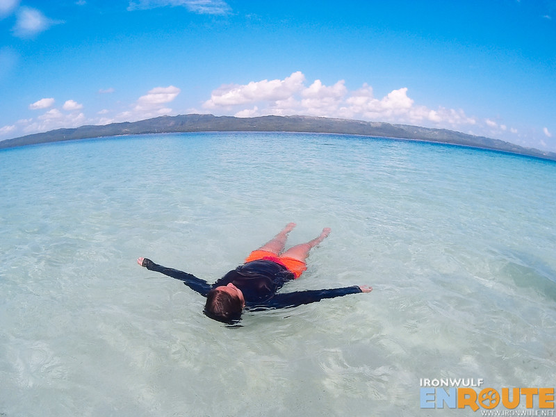 Floating in the clear waters near the sandbar