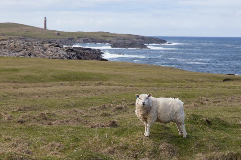Near Dun Eistean, Isle of Lewis