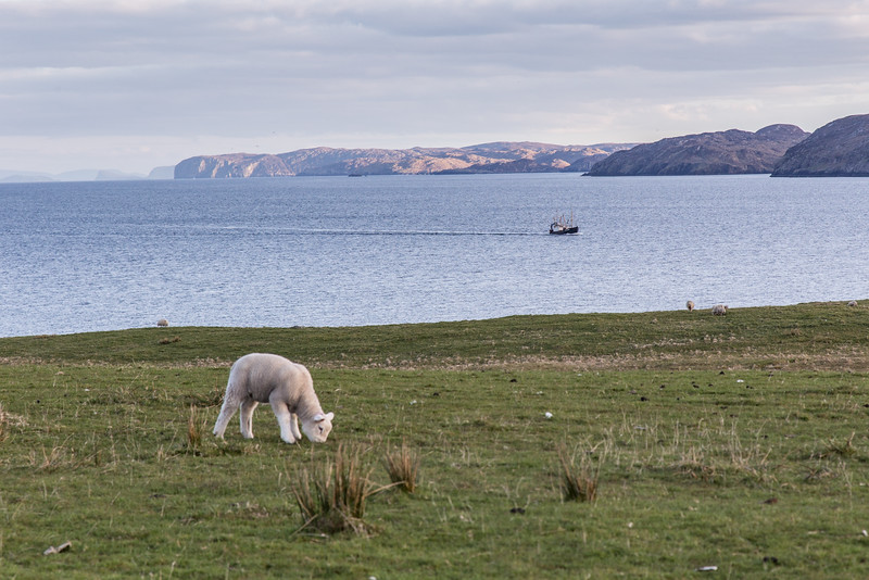 Near Stornoway, Isle of Lewis