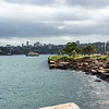 Photo taken from the Barangaroo Reserve