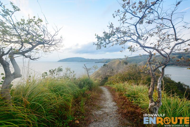 Trail to the ridge