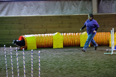 Top Dog Agility October 2016
