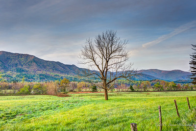Cades Cove, Great Smokies National Park