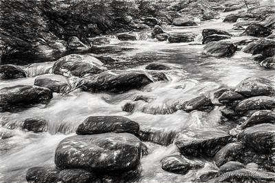 Upper Tremont River